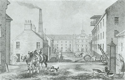 Bunhouse Mill